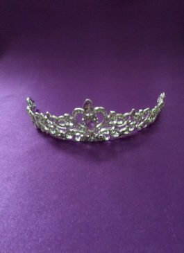 Sliver Diamante Tiara